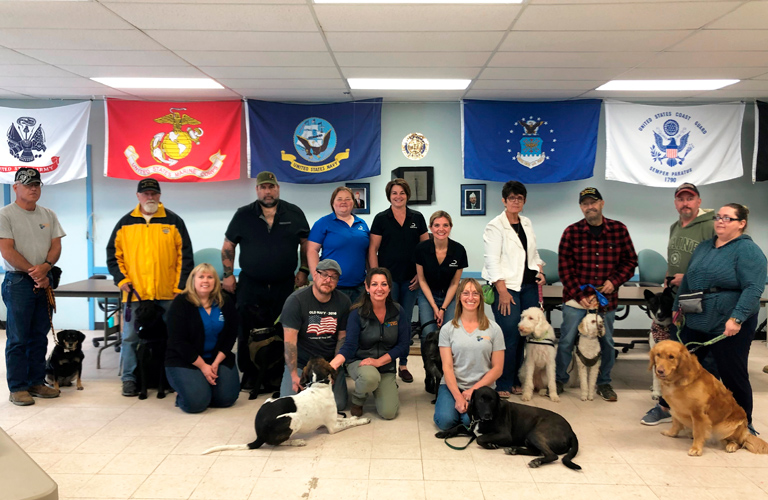 Dechra Vet Dog Teams